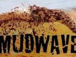 mudwave